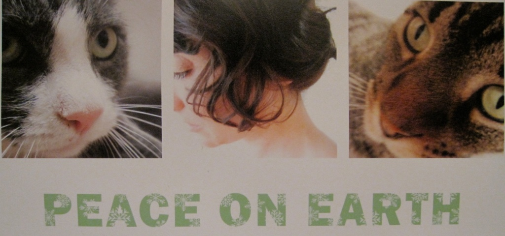 Holiday Card from I HAVE CAT author and her cats