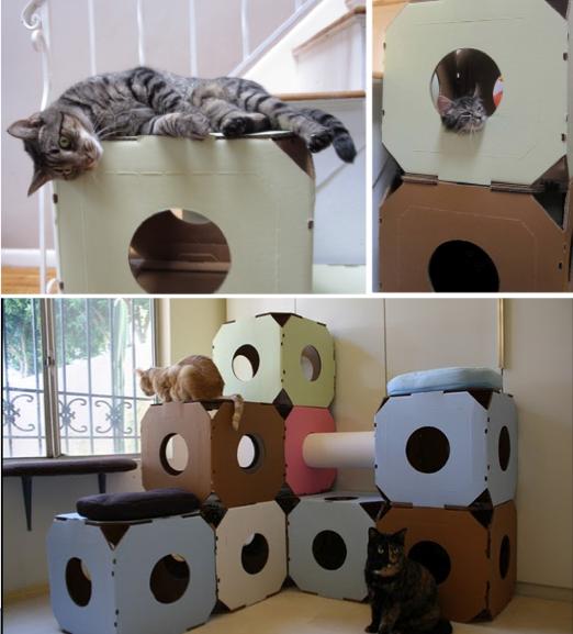 Modern cat condos